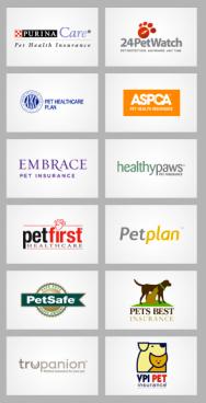 Pet Insurance Companies >> Insurance Life With Cerebellar Hypoplasia Cats